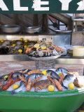 Seafood Restaurant  Nice  Alpes Maritimes  Provence  Cote d'Azur  French Riviera  France