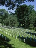 Arlington Cemetery  Arlington  Virginia  USA