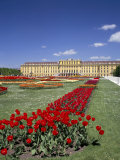 Palace and Gardens  Schonbrunn  Unesco World Heritage Site  Vienna  Austria