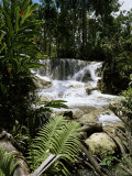Dunns River Falls  Jamaica  West Indies  Caribbean  Central America