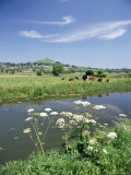 River Brue with Glastonbury Tor in the Distance  Somerset  England  United Kingdom