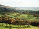 Landscape Near Wincle  Cheshire  England  United Kingdom