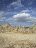 Roman City of the 3rd Century  Volubilis  Unesco World Heritage Site  Morocco  North Africa  Africa