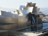 Guggenheim Museum  Bilbao  Euskadi (Pais Vasco)  Spain