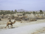 Village in Baluchistan  Iran  Middle East