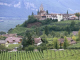 Traminer  the Town That Gave Its Name to Gewurztraminer Wine  Bolzano  Alto Adige  Italy