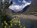 The Urubamba Valley  the River Continues Down the Gorge Past Machu Picchu  Peru  South America