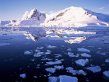 West Coast  Antarctic Peninsula  Antarctica  Polar Regions