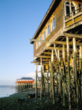 Stilted Buildings  Zone of Castro  Chiloe  Chile  South America