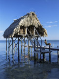 Tourist Hut for Rent  Ambergris Cay  Belize  Central America
