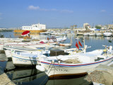 Fishing Boats in the Fishing Harbour  Tyre (Sour)  Lebanon  Middle East