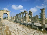 Roman Triumphal Arch and Colonnaded Street  Al Bas Site  Unesco World Heritage Site  Tyre  Lebanon
