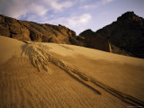 A Sand Avalanche after a Rainstorm in the Sahara Desert  Algeria  North Africa  Africa