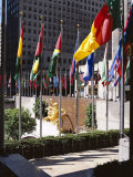 Flags Outside the Rockefeller Center  New York City  New York  USA