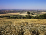 View from the Ridgeway of the Vale of Aylesbury  Buckinghamshire  England  United Kingdom
