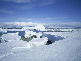 Coastal Landscape  Antarctic Peninsula  Antarctica  Polar Regions