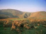 An Autumn Evening  the Long Mynd  Shropshire  England  United Kingdom