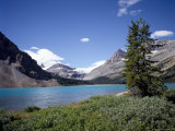 Bow Lake with Bow Glacier Behind  Icefields Parkway  Banff National Park  Alberta