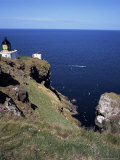 Lighthouse and Sea-Bird Cliffs  St Abb's Head  Berwickshire  Borders  Scotland