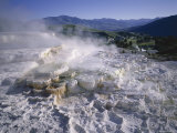 Minerva Spring  Mammoth Hot Springs  Yellowstone National Park  Wyoming