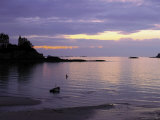 Sunset Over Bay  Dinard  Cote d'Emeraude (Emerald Coast)  Cotes d'Armor  Brittany  France