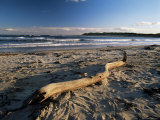 Beach and Sea at Dusk  Alnmouth  Northumberland  England  United Kingdom