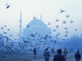 Laleli Mosque  Istanbul  Turkey  Europe  Eurasia