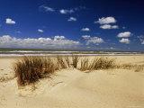 Beach  Cote d'Argent  Gironde  Aquitaine  France