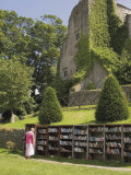 Bookstall in Grounds of Hay on Wye Castle  Powys  Mid-Wales  Wales  United Kingdom