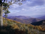 Area Near Loft Mountain  Shenandoah National Park  Virginia  USA