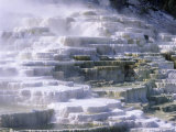 Terraces  Mammoth Hot Springs  Yellowstone National Park  Wyoming