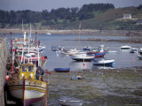 Fishing Boats and Pleasure Boats in Harbour  Cote De Granit Rose  Brittany  France