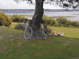 Bicycles by Tree and Couple Relaxing on the Grass  St Pol De Leon  Carentac in Distance  Brittany