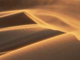 Sand Blowing on Crest of Dune in Erg Chebbi  Sahara Desert  Near Merzouga  Morocco