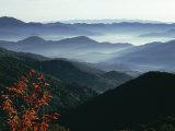 Mist Rising from the Cataloochee Ski Area  Near Maggie Valley  North Carolina  USA
