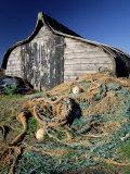 Fisherman's Hut  Lindisfarne (Holy Island)  Northumberland  England  United Kingdom