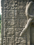 Mayan Stela J  Dating from 756 AD  Quirigua  Unesco World Heritage Site  Guatemala  Central America