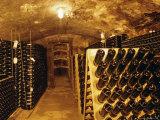 Cellar  Wine Production  Saarburg  Saar-Valley  Germany