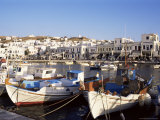 Harbour with Fishing Boats  Mykonos Town  Island of Mykonos  Cyclades  Greece