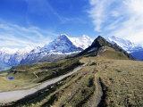 Eiger  Monch and Jungfrau  Bernese Oberland  Swiss Alps  Switzerland