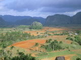 View Over Vinales Valley Towards Tobacco Plantations and Mogotes  Vinales  Cuba