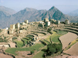 Terraced Fields Near Menacha  North Yemen  Yemen  Middle East