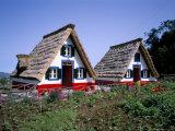 Traditional Houses at Santana  Madeira  Portugal