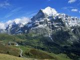 The Wetterhorn  Near Grindelwald  Bernese Oberland  Swiss Alps  Switzerland
