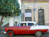 Old American Car Parked on Street Beneath Fruit Tree  Cienfuegos  Cuba  Central America