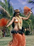 Hula Dance in Kapiolani Park  Waikiki  Hawaii  Hawaiian Islands  USA