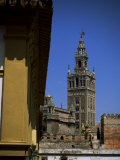 Giralda Tower  Seville  Andalucia  Spain