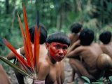 Yanomami Man Made up for the Feast  Brazil  South America