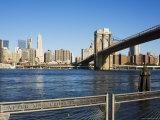 Brooklyn Bridge and Manhattan from Fulton Ferry Landing  Brooklyn  New York City  USA