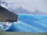 Glacial Icebergs on Lago Argentina  Patagonia  Argentina  South America